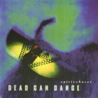 Dead Can Dance 	Spiritchaser	1996г.  CD