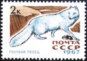 СССР 0967 годик . Пушные промысловые звери . Голубой амба .