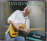 David Wilcox (blues rock)	Boy in the boat	2008г		Irond	    CD