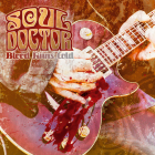 Soul Doctor (hard rock)	Blood runs cold	2008г		Irond	  CD