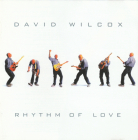 David Wilcox (blues rock)	Rhythm of love	2007г		IROND	   CD
