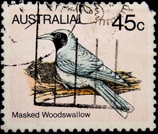 Австралия 1980 год . Masked Woodswallow .